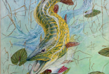 'Mike the leaping Pike'
